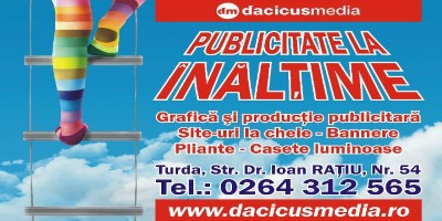 dacicus media panou